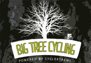 Big Tree Cycling logo