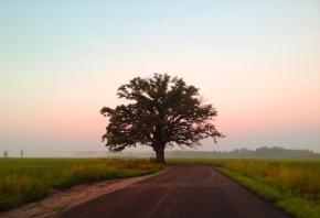 Riding in COMO: Fall Photo Album2012