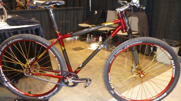 Custom-built bike